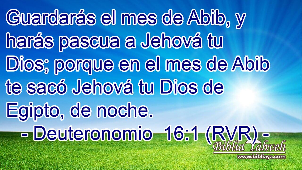 Abibe bíblia na de mês Calendário de